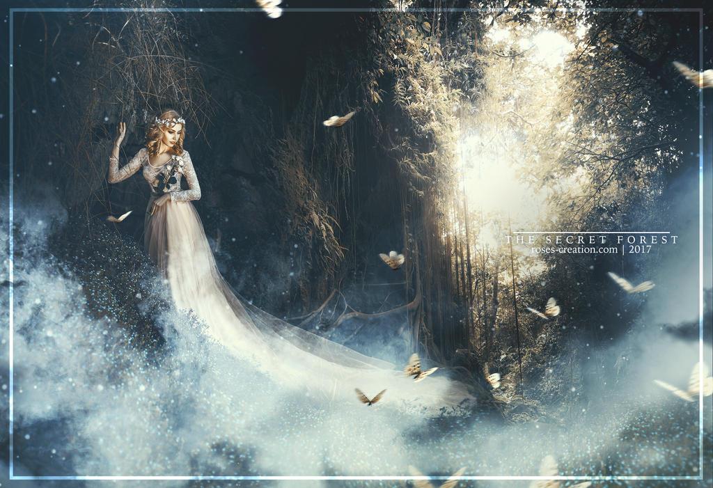 The Secret Forest by dreamswoman