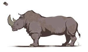 Rhinoceros by Schoyhan
