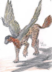 Archeopteryx Griffin by Lord-Triceratops