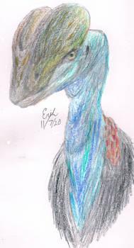 Dilophosaurus as Cassowary