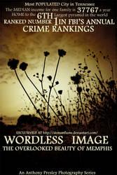 'Wordless Image'