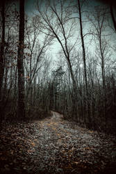 Sleepy Hollow by AnthonyPresley