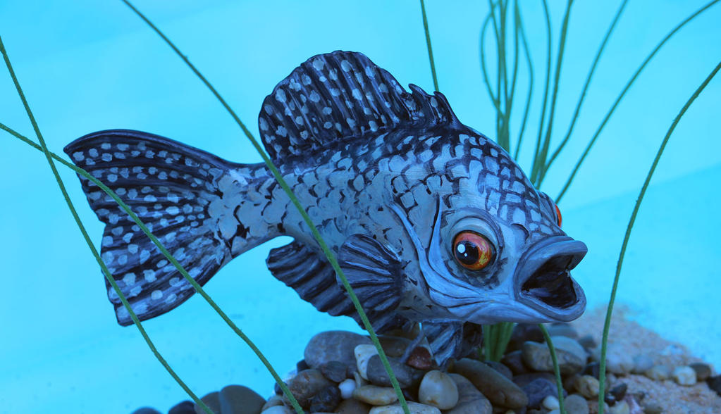 Fish Sculpt by spulunk