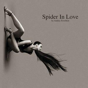 Spider in love