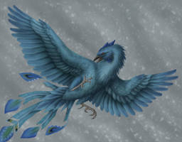 Ice phoenix by Ramul