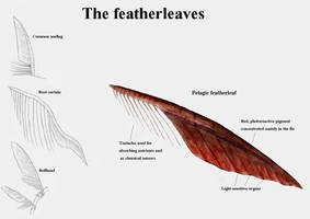 REP: The featherleaves by Ramul