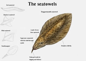 REP: The seatowels by Ramul