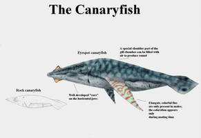 REP: The Canaryfish by Ramul