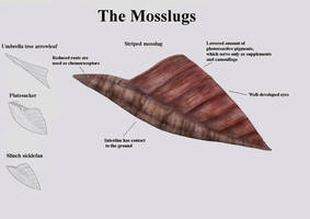 REP: The Mosslugs by Ramul
