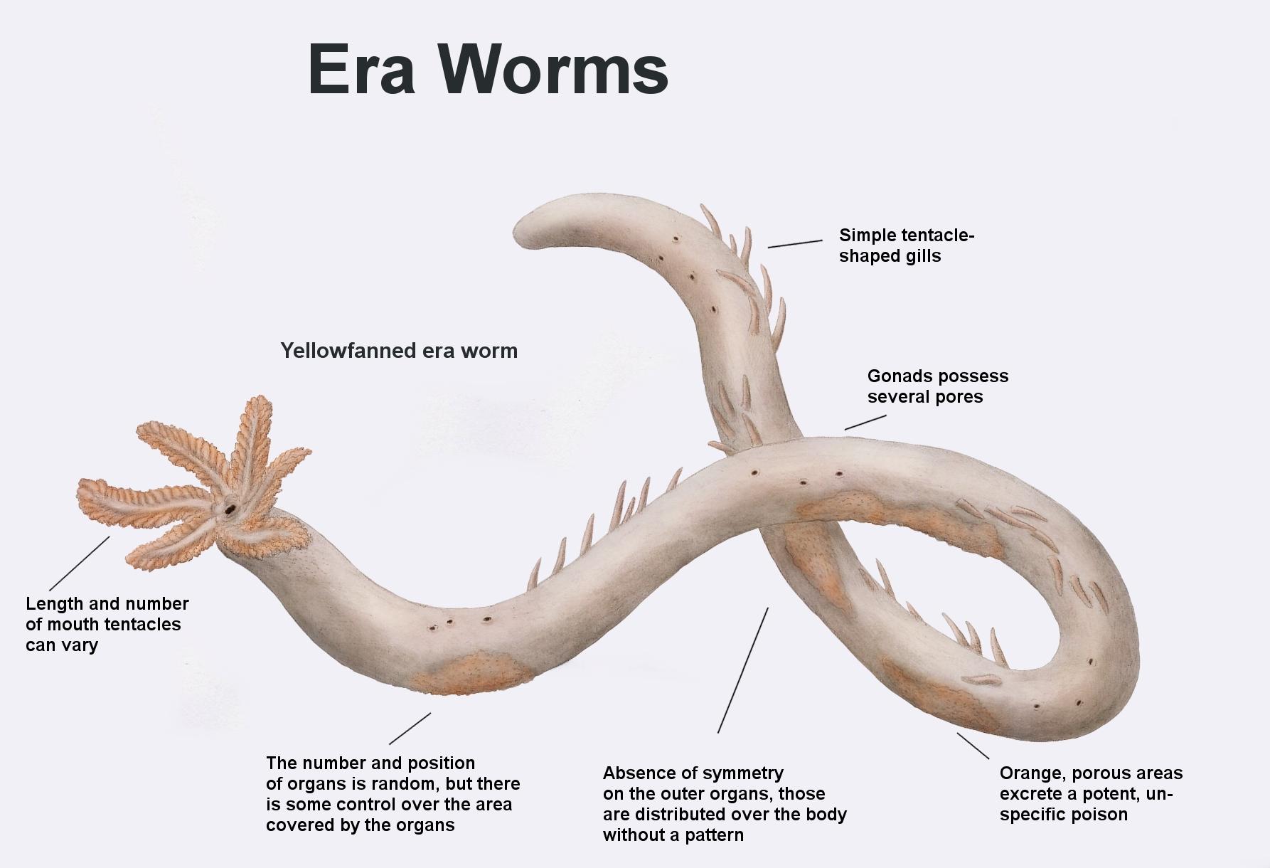 REP: Era worm