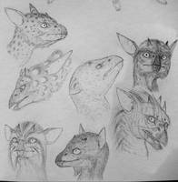 Imp faces