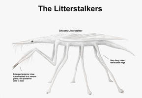 REP: The Litterstalkers by Ramul