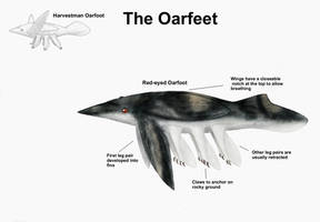 REP: The Oarfeet by Ramul
