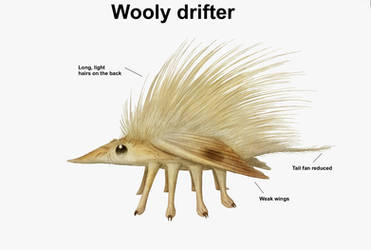 REP: Wooly Drifter by Ramul