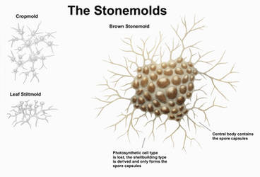 REP: The Stonemolds by Ramul