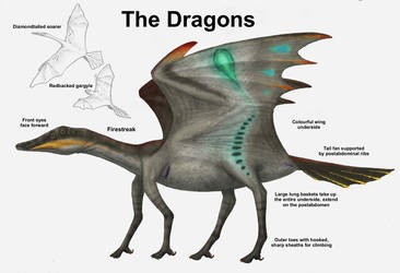 REP: The Dragons by Ramul