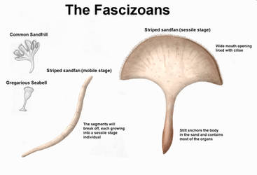REP: The Fascizoans by Ramul