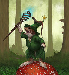 Magic toad