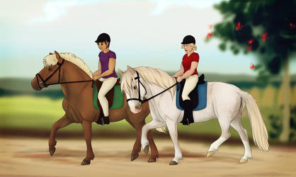 Dressage Training Collab