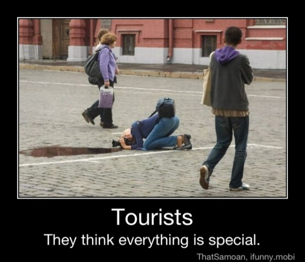 Image result for silly tourists