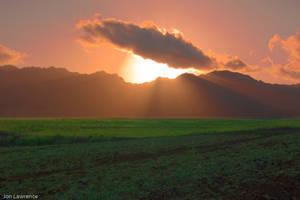 HDR Sunshine by nemisis11