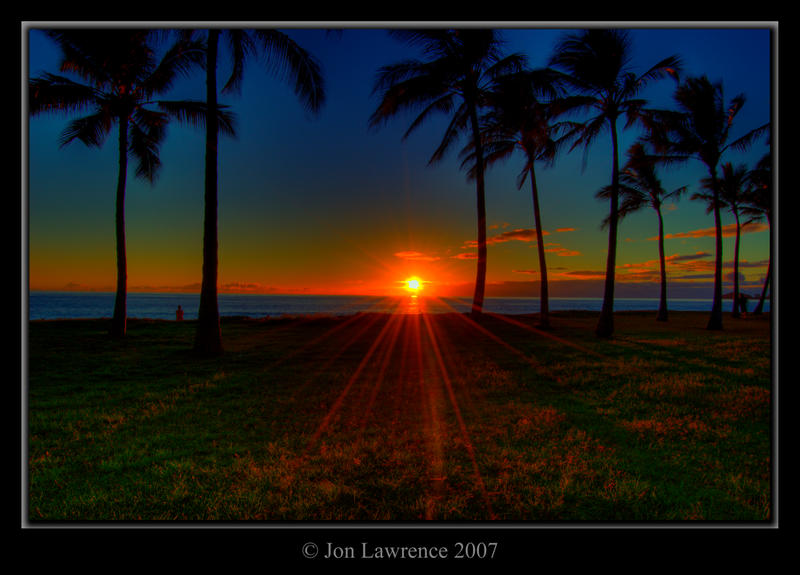 Palm Sunset by nemisis11