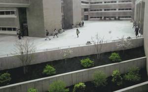 Contrast by skateboarder11