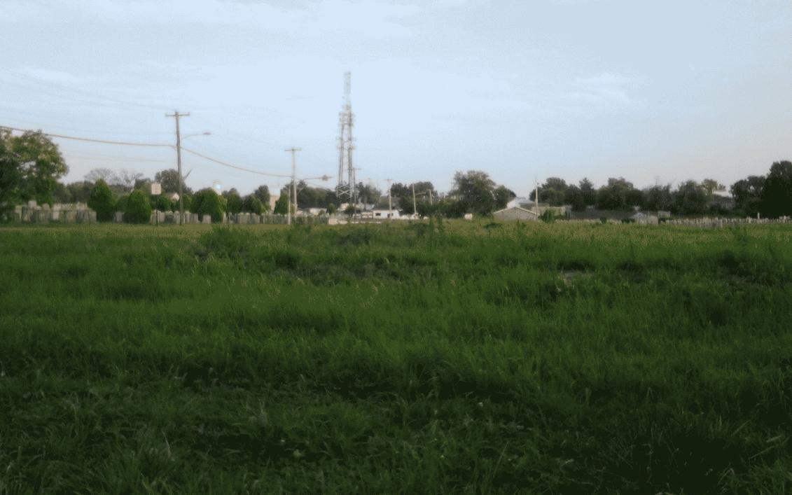 Busy Field by skateboarder11