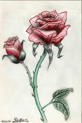 Flower by Skullface