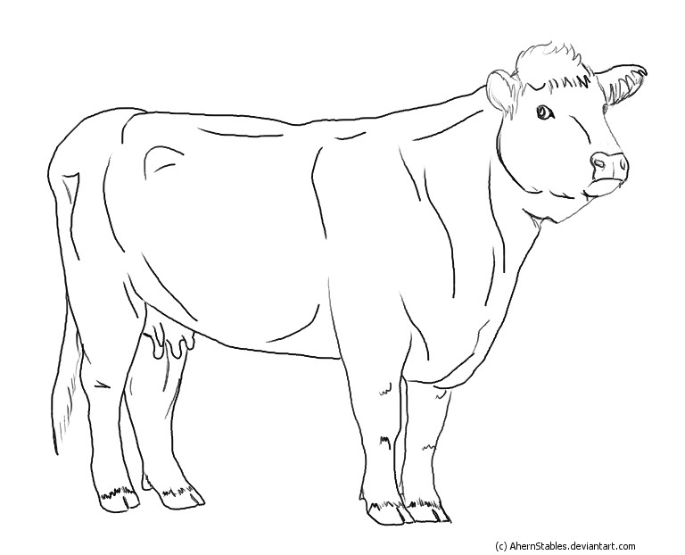 Line Drawing Cow : Hereford cow line art by ahernstables on deviantart