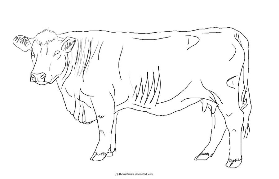 Line Art Cow : Old hereford cow lineart by ahernstables on deviantart