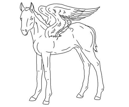 Pegasus Foal Line Art By Ahernstables