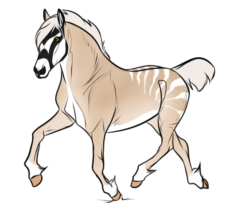 9965 AS Zola Yejide by AhernStables