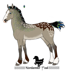 2019 Nordanner Mascot Entry by AhernStables