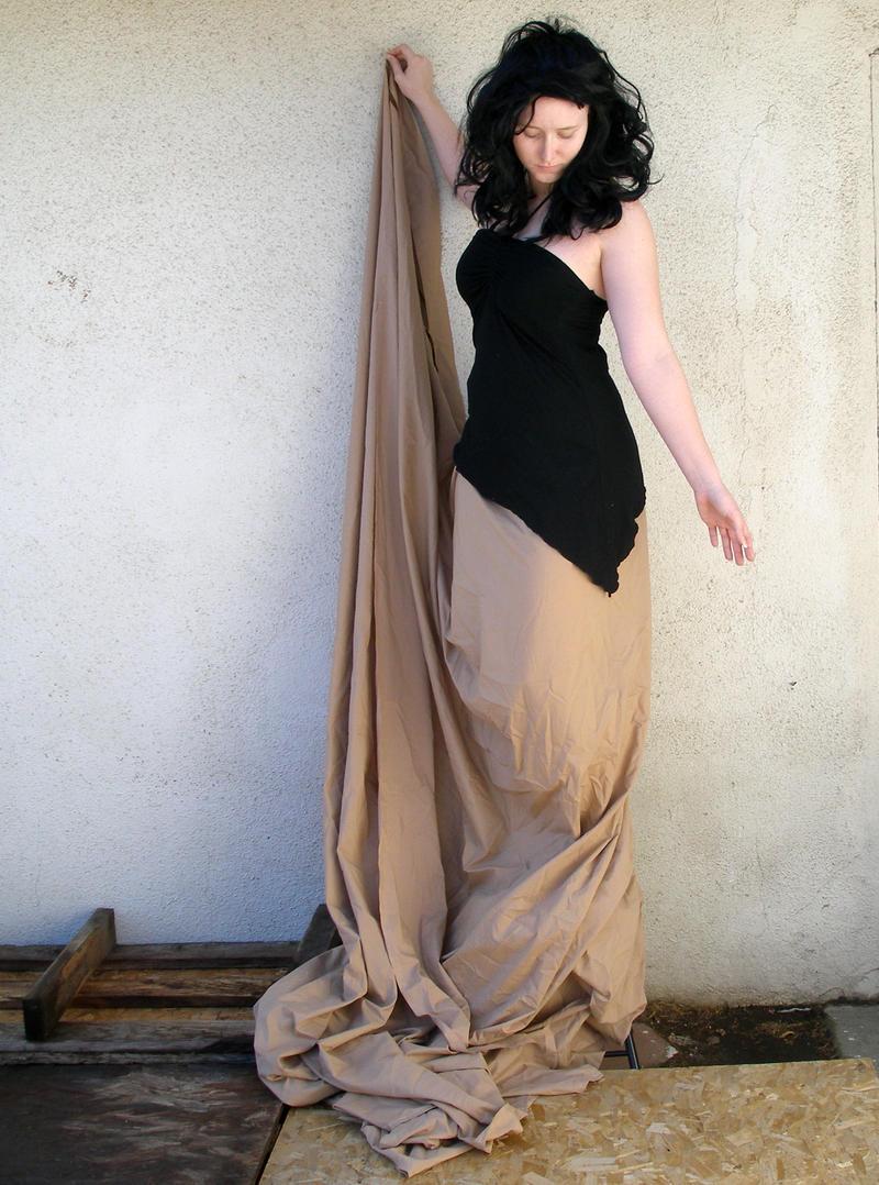 long brown skirt 8 by PhoeebStock