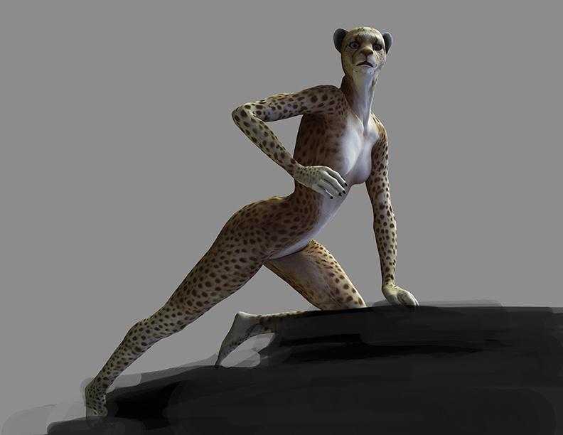 Cheetah Skin Texture Cheetah Texture Progress by