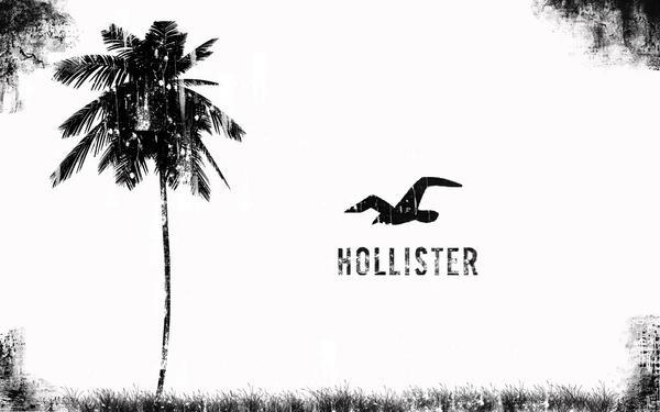 Source: Hollister