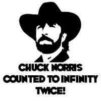 Chuck Norris T Shirt by gels31