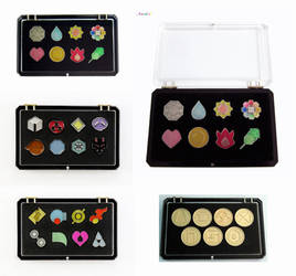 Display Cases For Pokemon Gym Badges by winter-wish