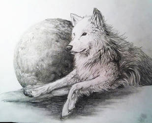 Wolf And Moon by kyrisnowpaw