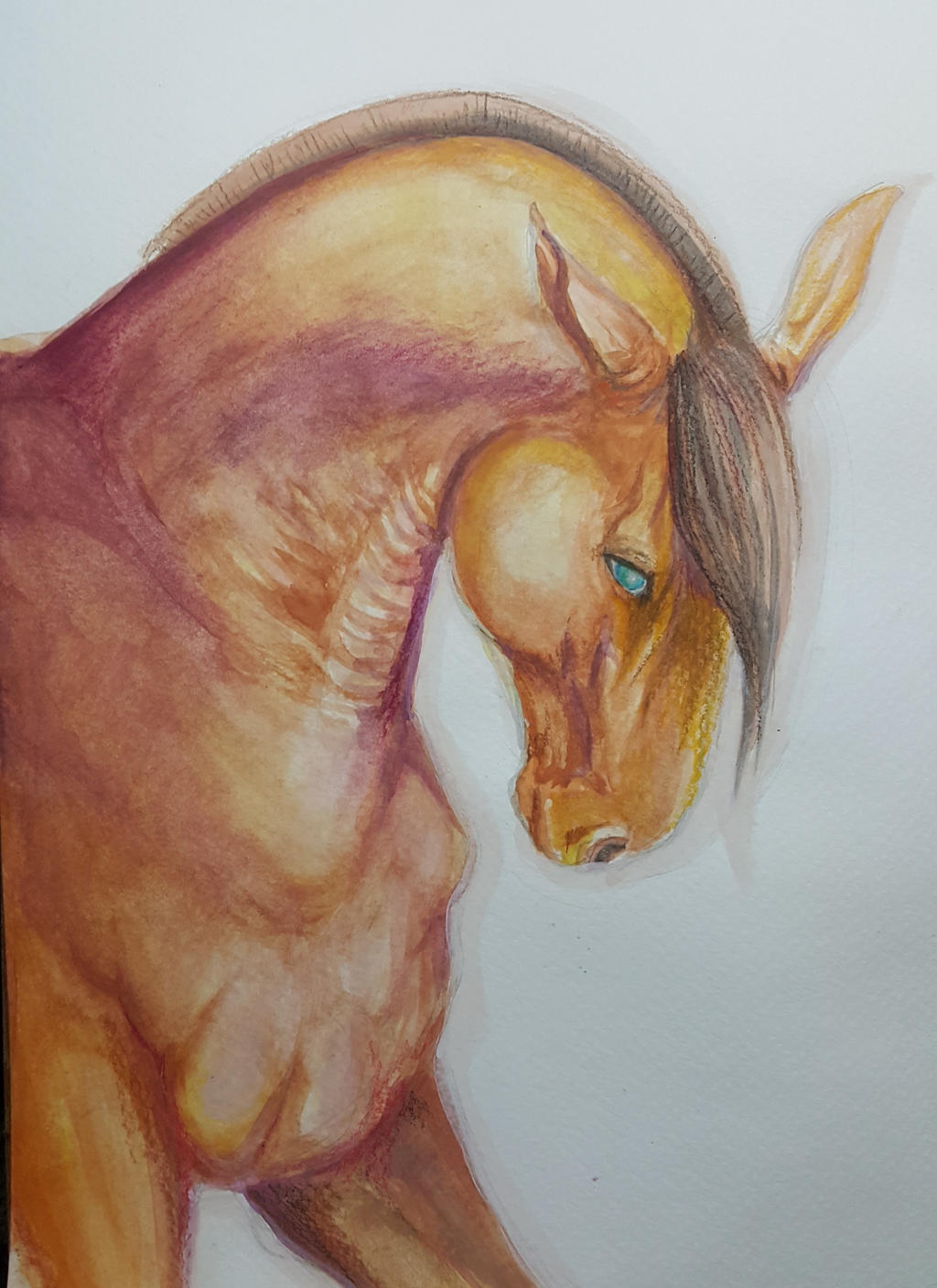 Watercolor Horse by kyrisnowpaw