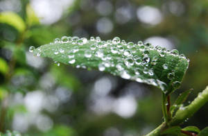 when it rains 3 by Deeeemz