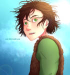 HtTYD - Hiccup's Hair
