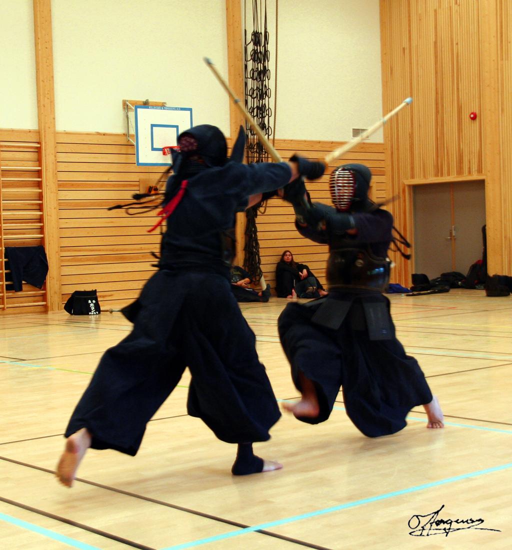 Norway Kendo Championships 1 by dragonslayero