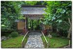 Hagakure - Hidden in the leaves 3