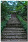 Hagakure - Hidden in the leaves 4
