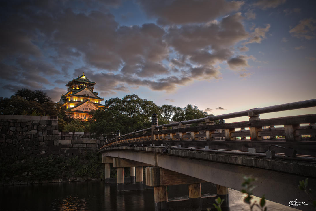Osaka Castle 1 by dragonslayero