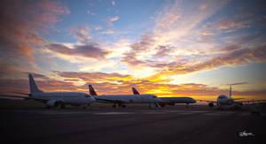 Aviation morning glory