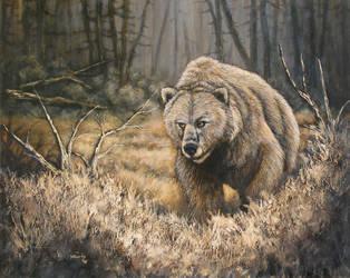 The Bear by Kchan27