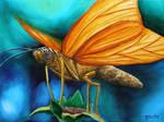 Butterfly by Kchan27
